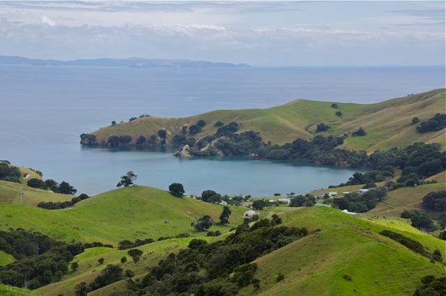 Coromandel Peninsula Scenery